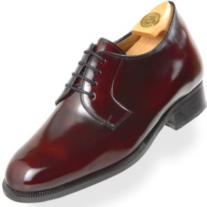 HiPlus shoes 2000 B in FLORENTIC skin. Add 6 to 7 cm height